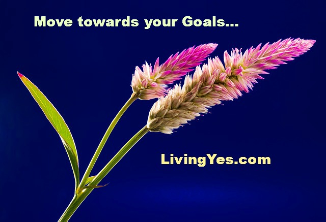 Move towards your Goals